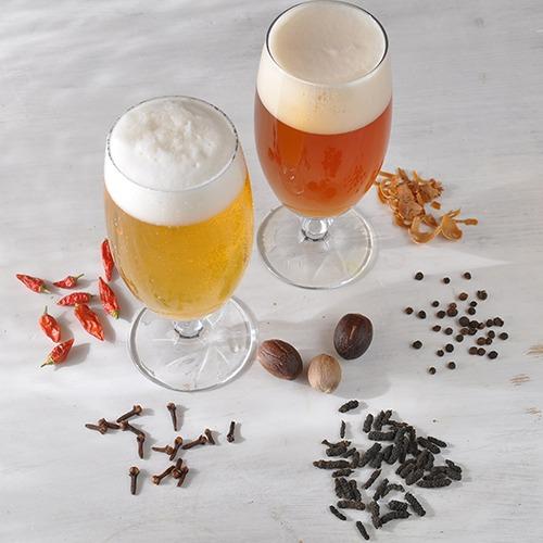 Gewuerze zur Verarbeitung wie in selbstgebrautem Bier