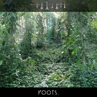 Vanilleschote im Dschungel natürlich gewachsen