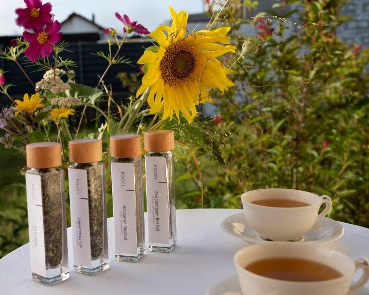 Gewuerzset Artemisia mit vier Beifuss Arten