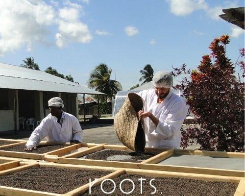 Wie schmecken nachhaltige Gewuerze wie Pfeffer von roots